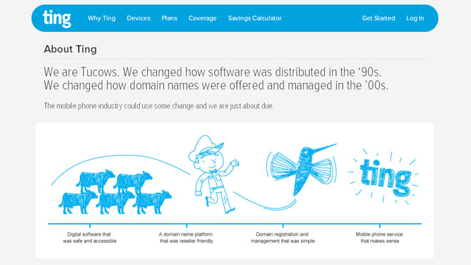 Ting Website Screenshot