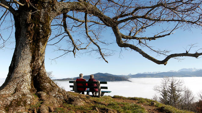 retirement, couple, bench, baby boomer